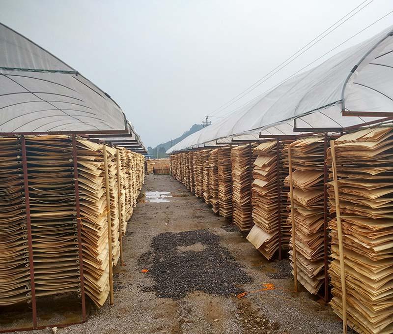 林世界建筑模板厂家晒板厂