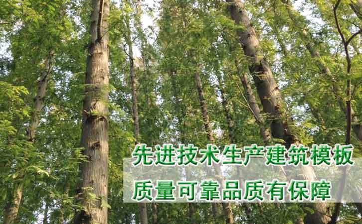 优质厂家推荐建筑怎么才能戒赌博厂家林世界木业