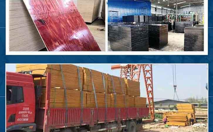 优质厂家推荐建筑模板厂家林世界木业