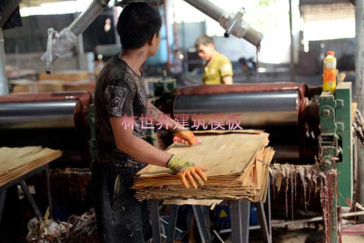 武昌区全酚胶清水模板木材市场