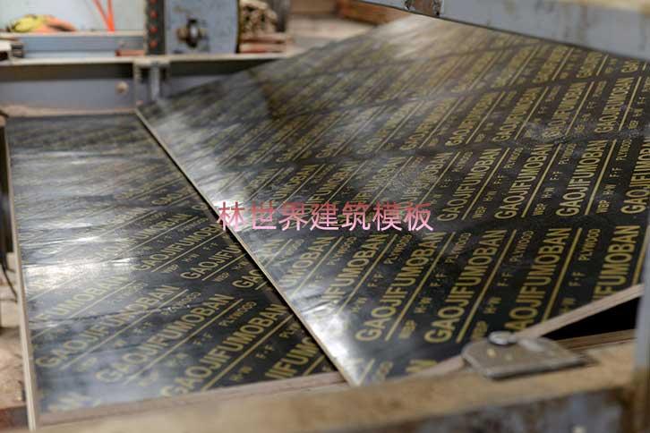 建筑模板生产厂家林世界