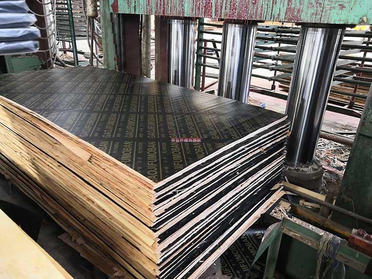 林世界木业生产的高级酚醛面胶覆膜模板