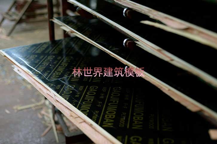 林世界建筑用桥梁模板产品