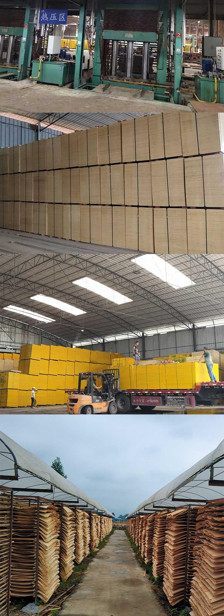 贵港建筑模板木材生产基地-林世界木业板材生产基地